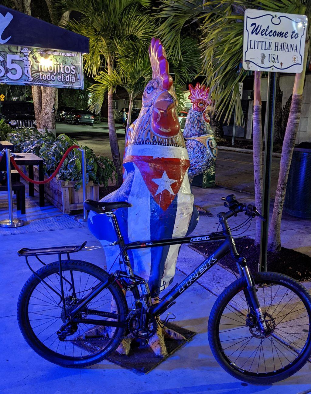 Trek Fuel 70 in Little Havana